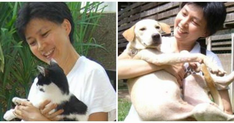 An Interview with Dr. Chan Kah Yein of AnimalCare